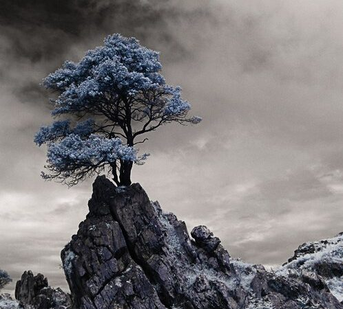 Ángel Diego об инфракрасной фотографии