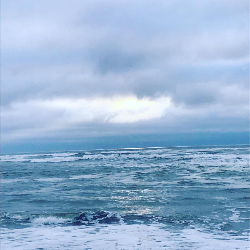 Kellogg Beach
